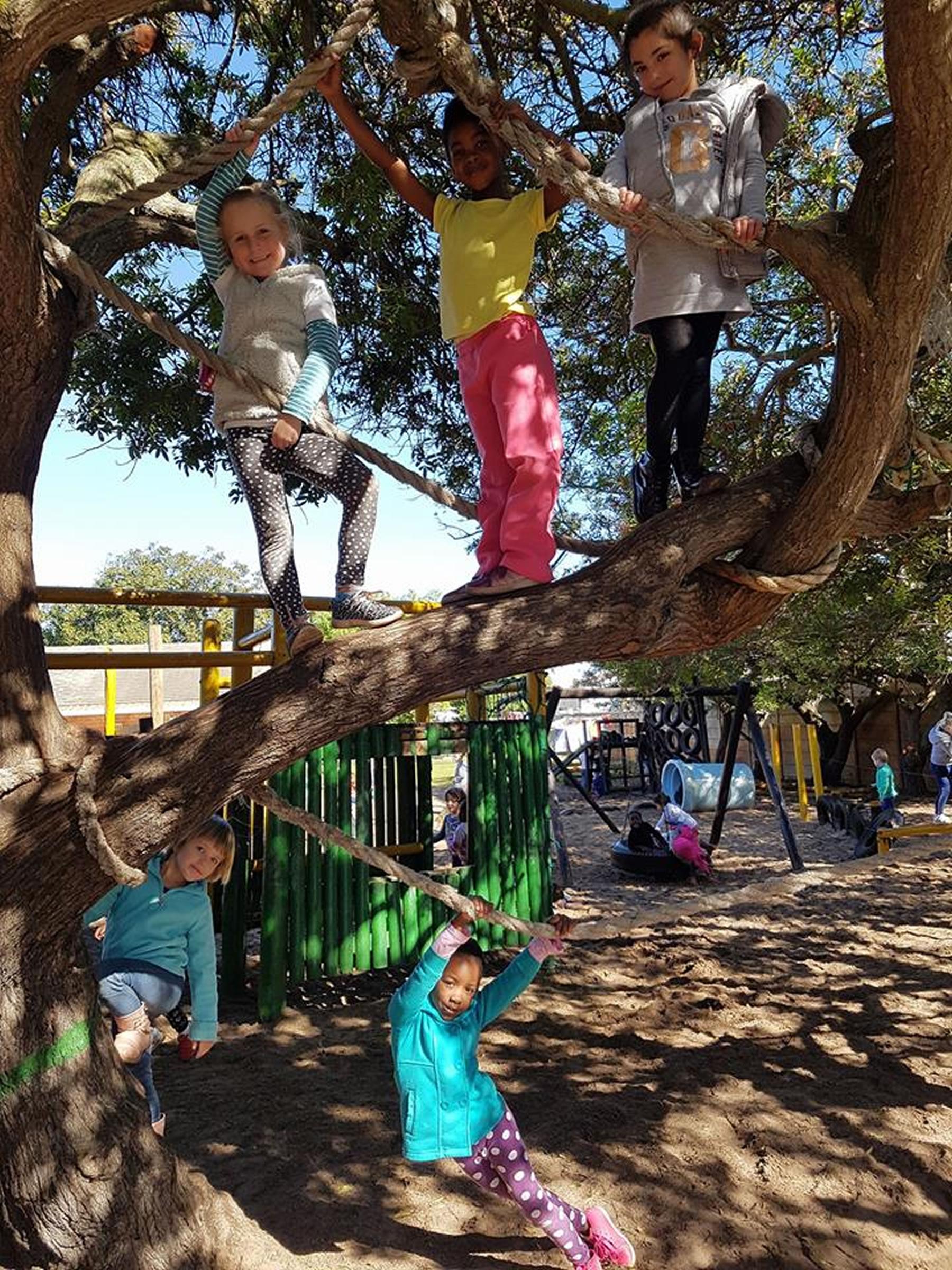 Lilliput Pre-Primary