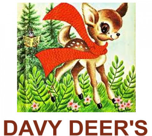 Davy Deer's Play Centre